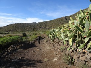 Santiago del Teide 2