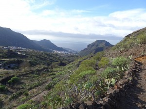 Santiago del Teide 3