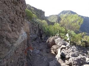 Santiago del Teide 4