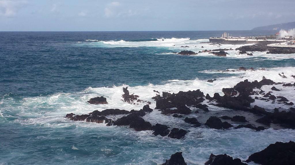 Mer Puerto 1